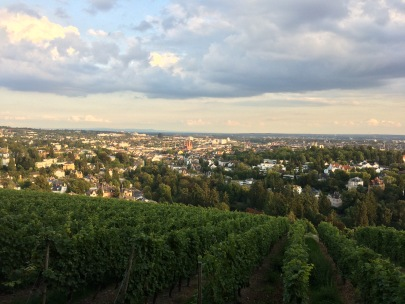 View of beautiful Wiesbaden from Neroberg
