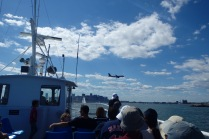 Return cruise took us right under the flight path of landing aircraft